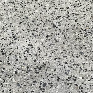 Polished Concrete Salt and Pepper Aggregate Finish